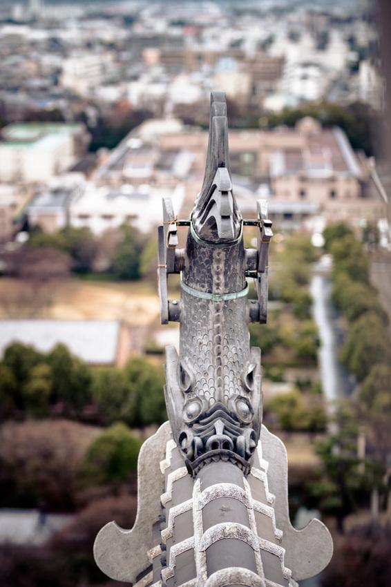 Canon EOS 6D_180105_449.jpg