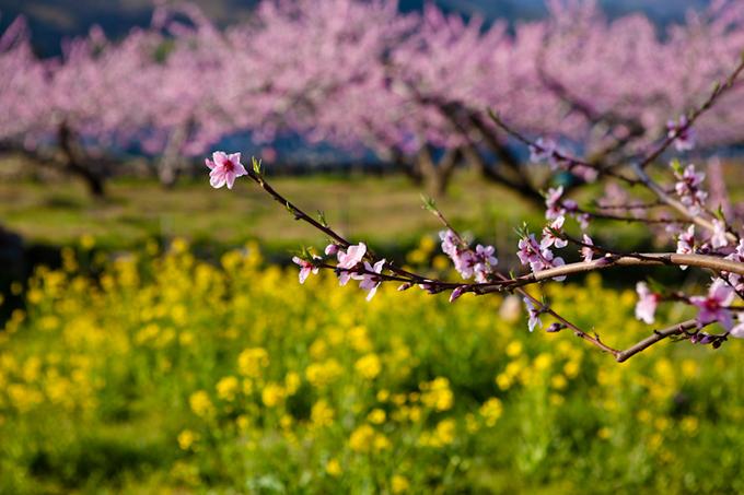 2012_04_18_9999_71.jpg