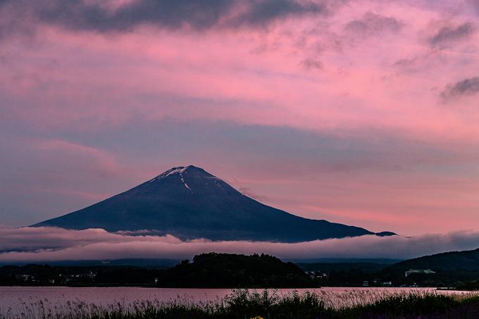L-_写真_2018_2018-06_0624_大石公園_夕景_5D3_1020-Edit.jpg